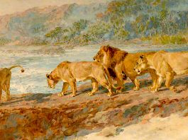 On The Bank Of An African River. Briton Riviere