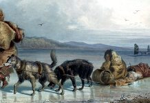 Dog Sledges Of The Mandan Indians. Karl Bodmer